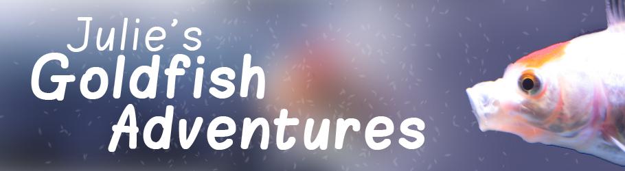 Goldfish Adventures