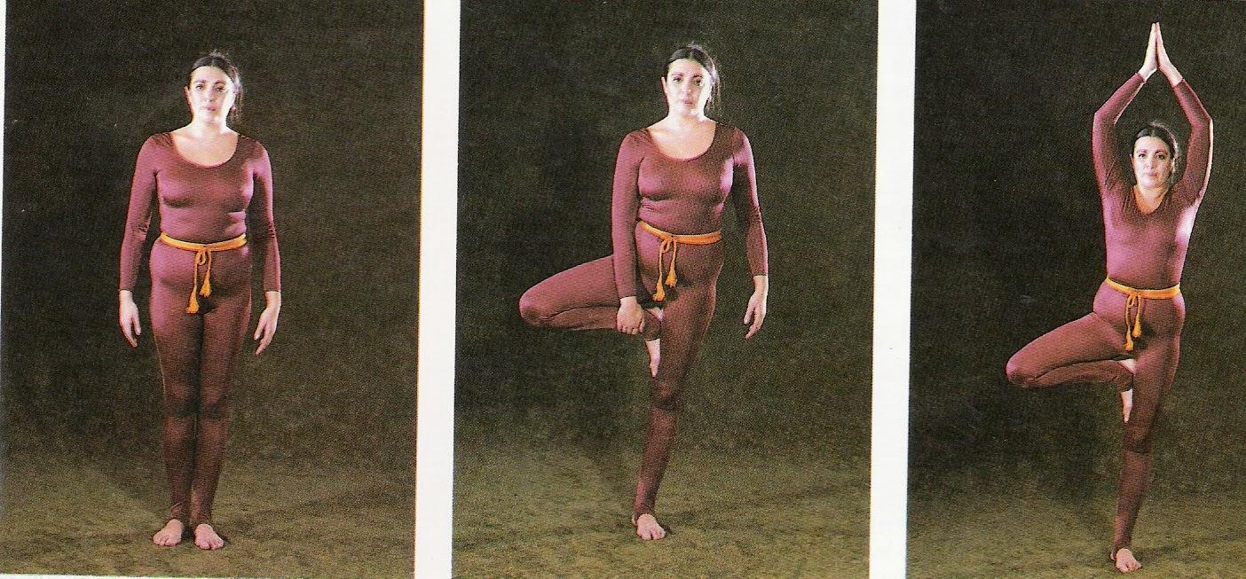 Ananda hatha yoga más de 5 000 años lo avalan