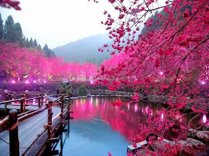 เที่ยวญี่ปุ่น ที่ไหนประทับใจนะ