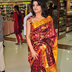 Tashu Kaushik In Treditional Saree