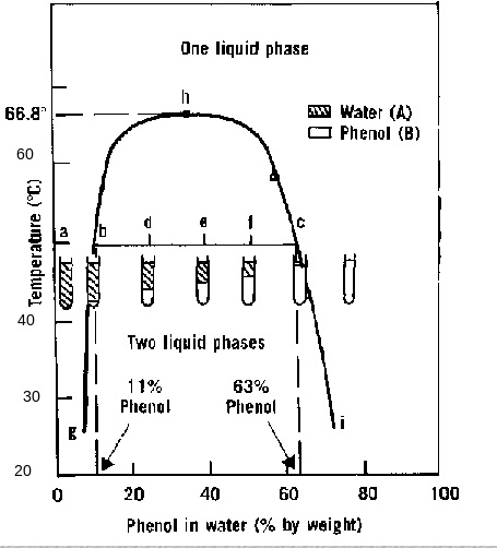 physical pharmacy lab  experiment 2   phase diagrams  part