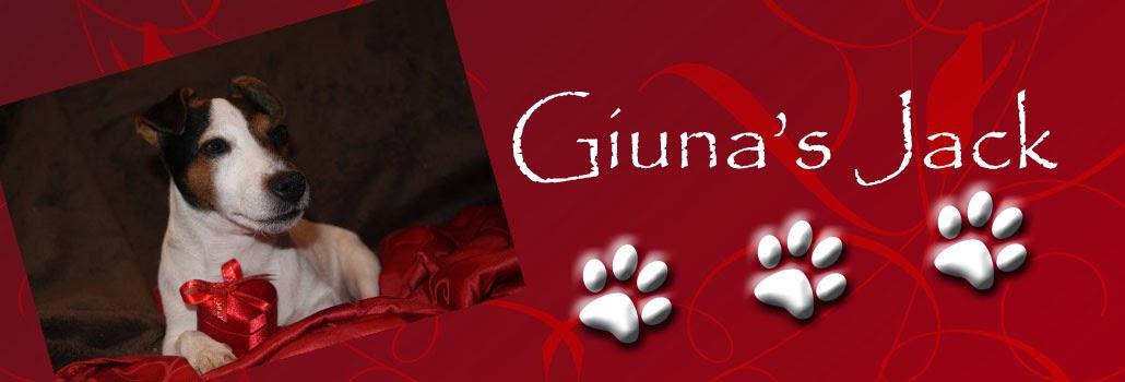 Giuna's Jack