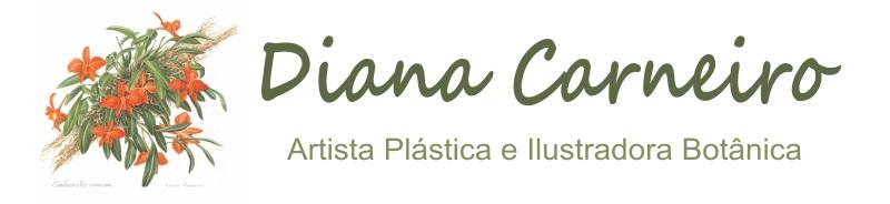 Diana Carneiro