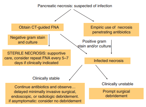chronic pancreatitis case study answers Acute and chronic pancreatitis by dr zahoor objectives we will study 1 pancreas – normal structure and function 2 case history - answers.