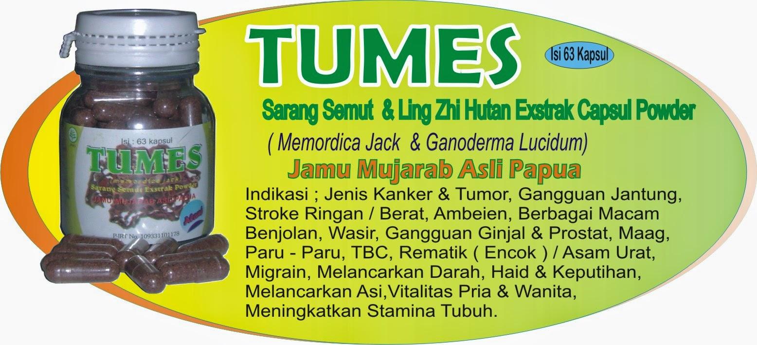 Obat Herbal Nirmala Jamur Lingzhi Kwalitas Super Tumor Kanker Dan Stroke Sarang Semut Jamu Mujarab Asli Papua