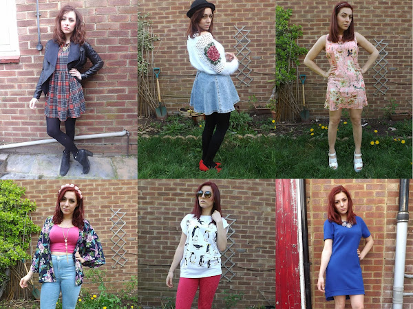 What Cat Wore | IN 2014