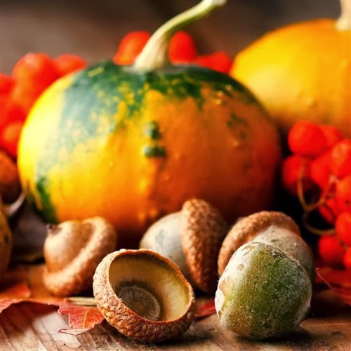 Free Thanksgiving Wallpaper For Android