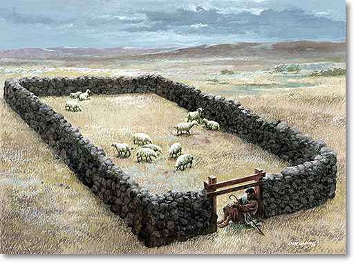Sheep passing through sheep gate. | 70 pieces jigsaw puzzle