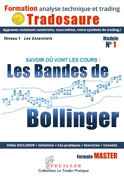 bandes-de-bollinger-tradosaure-FORMATION