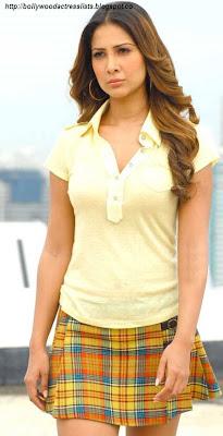 Kim Sharma, kim, bollywood, bollywood actress, image of bollywood actress