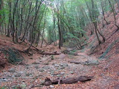 Ущелье Курлюк-Су