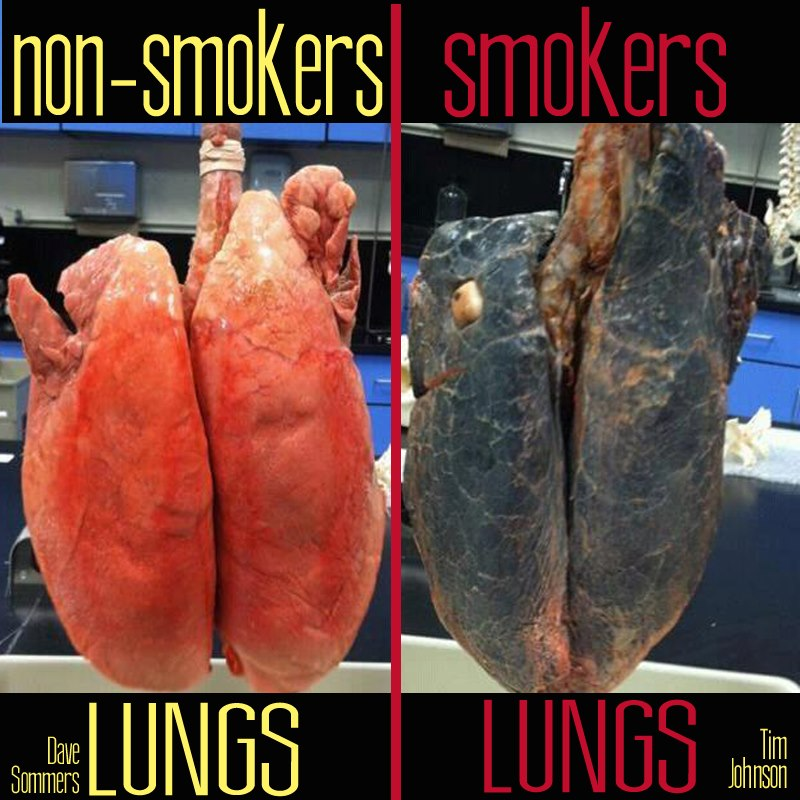 non smoker dating a smoker For a non-smoker if they marry you you will be smoking in the house that they live in non-smokers are non-smoker for a reason they will date you (and have sex with you) as long as they don't have to deal with the smoke that much.