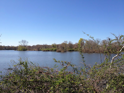 Brickyard Pond, Barrington RI