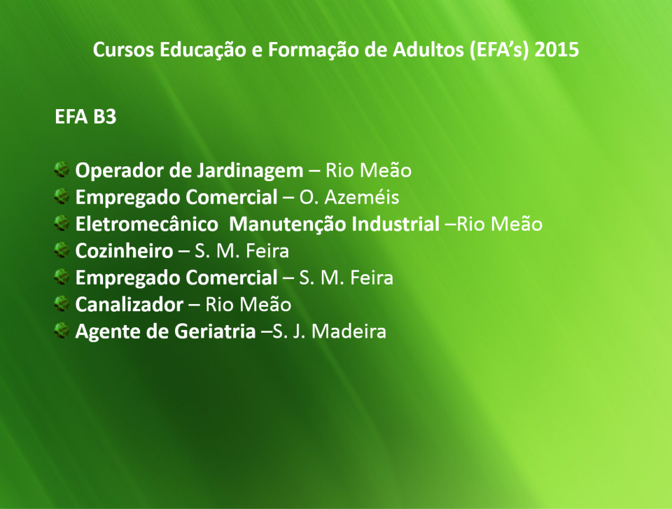 cursos efa b3 financiados