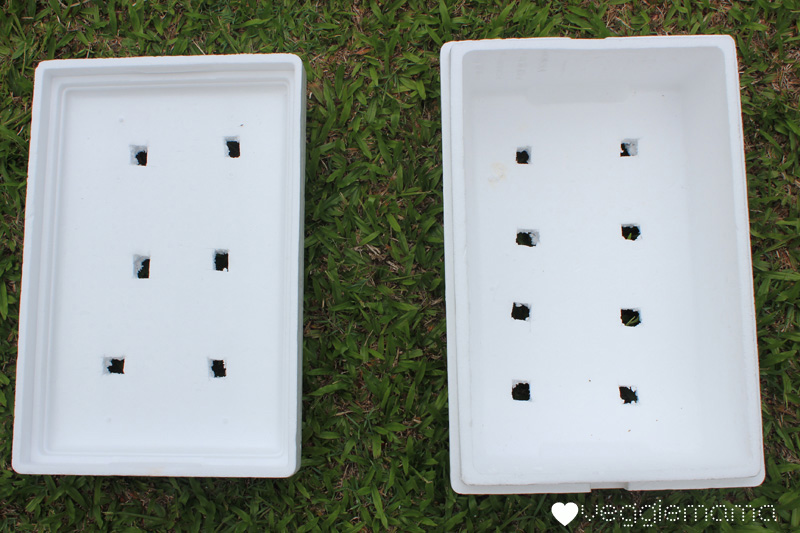 Making A Garden From Styrofoam Containers Veggie Mama
