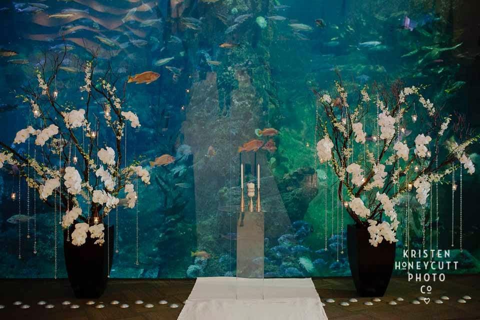 Seattle Aquarium wedding, white orchid trees, wedding ceremony decor