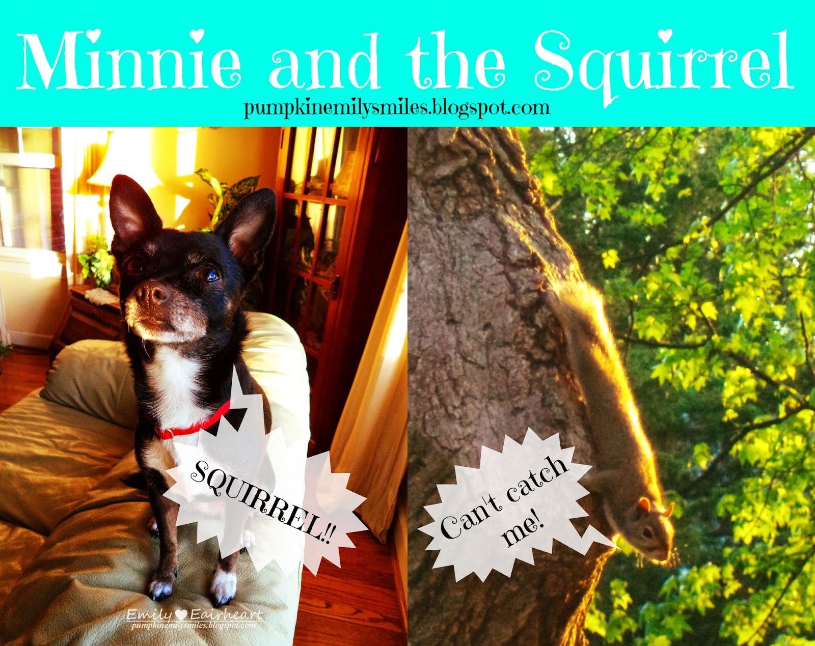 Minnie and the Squirrel