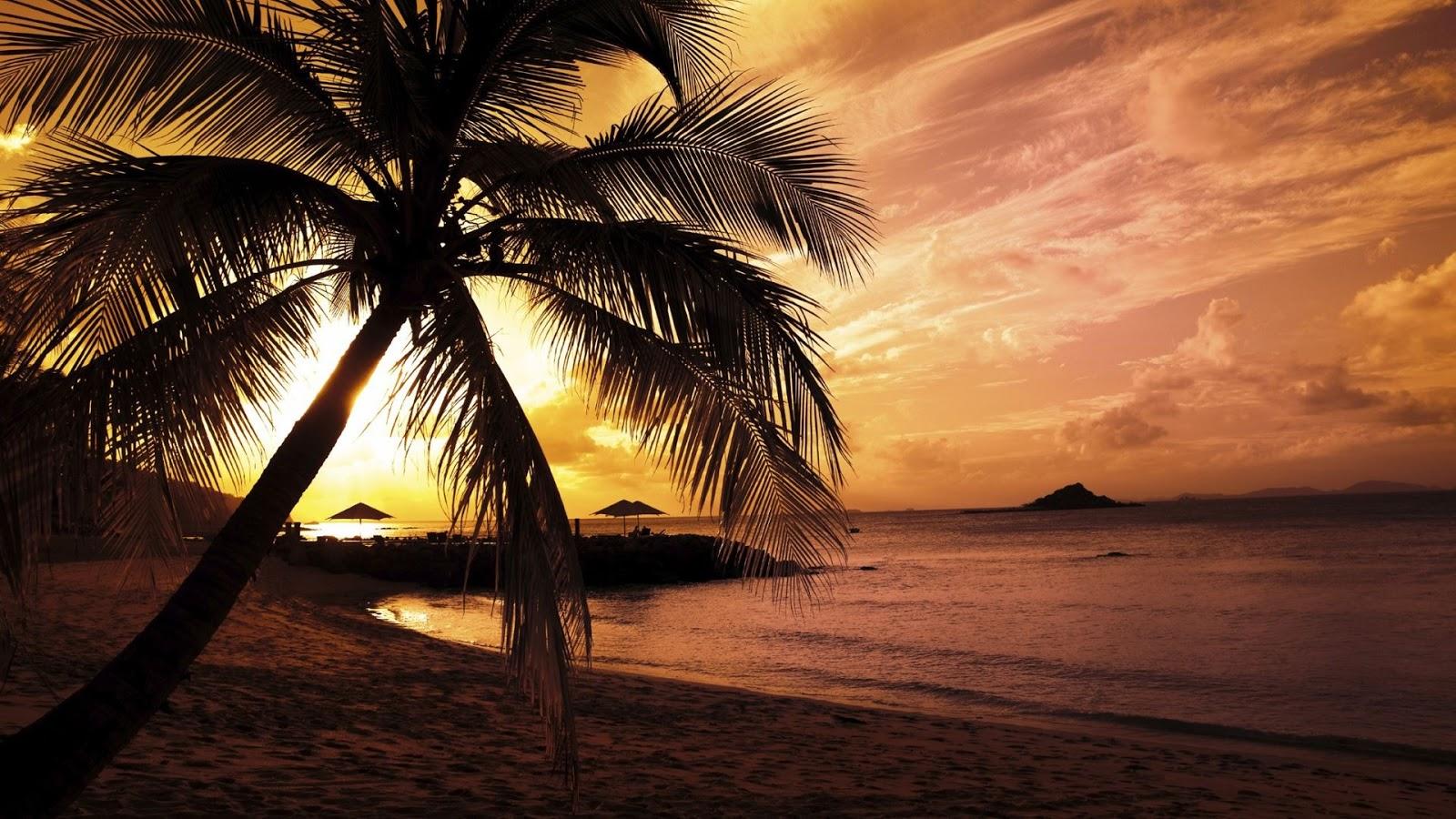 Beach Colors Twilight