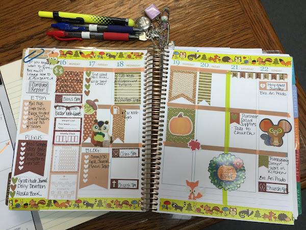 Plan with Me| Erin Condren Life Planner Thru November 29th