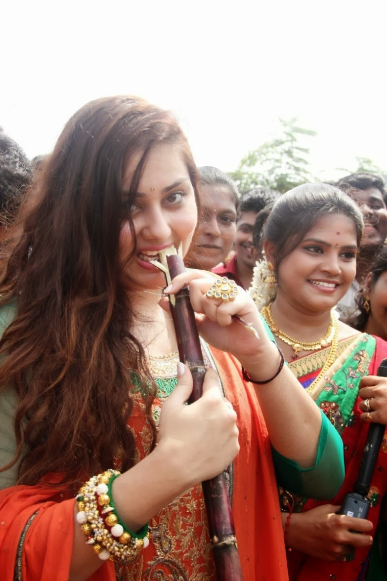 Namitha Kapoor Latest Photos Event 2014 - SHINER PHOTOS