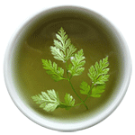 buy Japanese Artemisia mugwort wormwood yomogi tea
