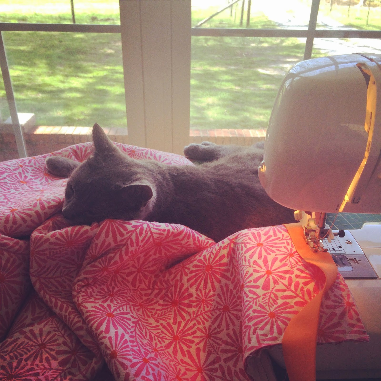 Cat taking a nap on my Faux Chenille Baby Blanket