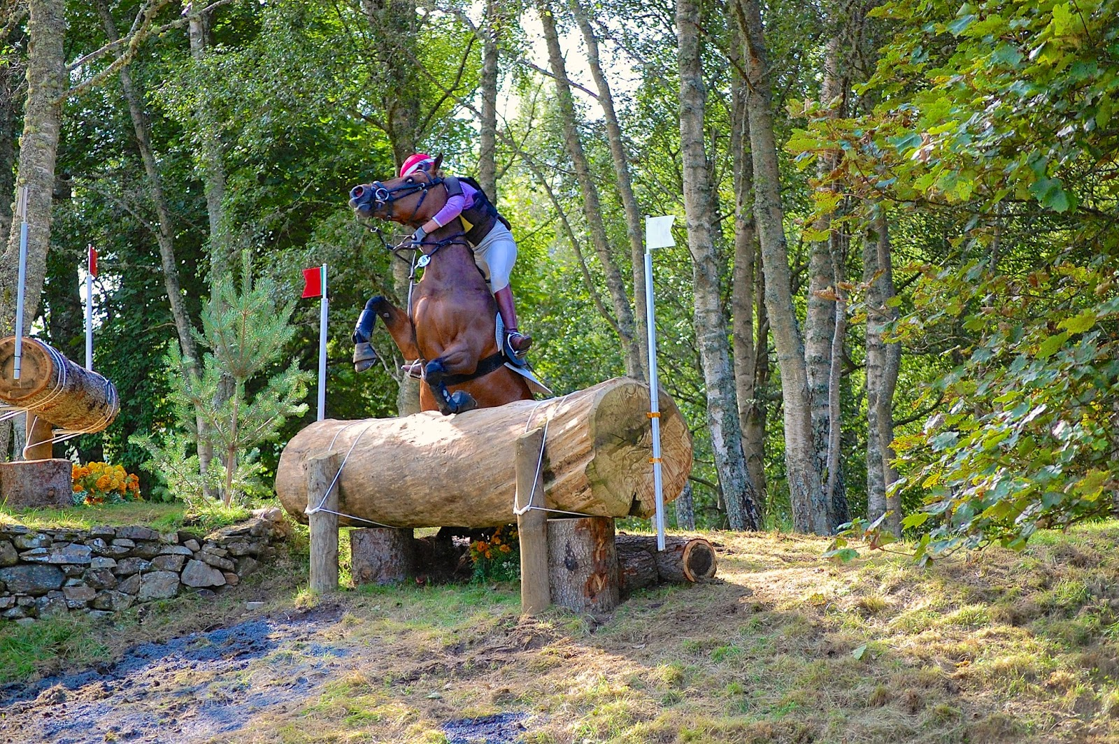 Blair Castle International Horse Trials horse crash
