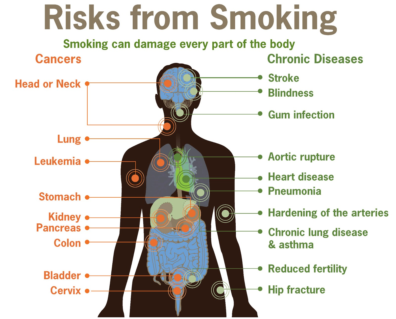 smokers can cause themselves serious health We all know smoking can cause a wide range of health problems and shorten your life passive smoking increases the risk of serious illness in both children and.