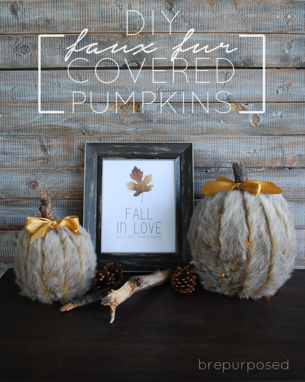 Pumpkin Ideas - DIY faux fur covered pumpkins