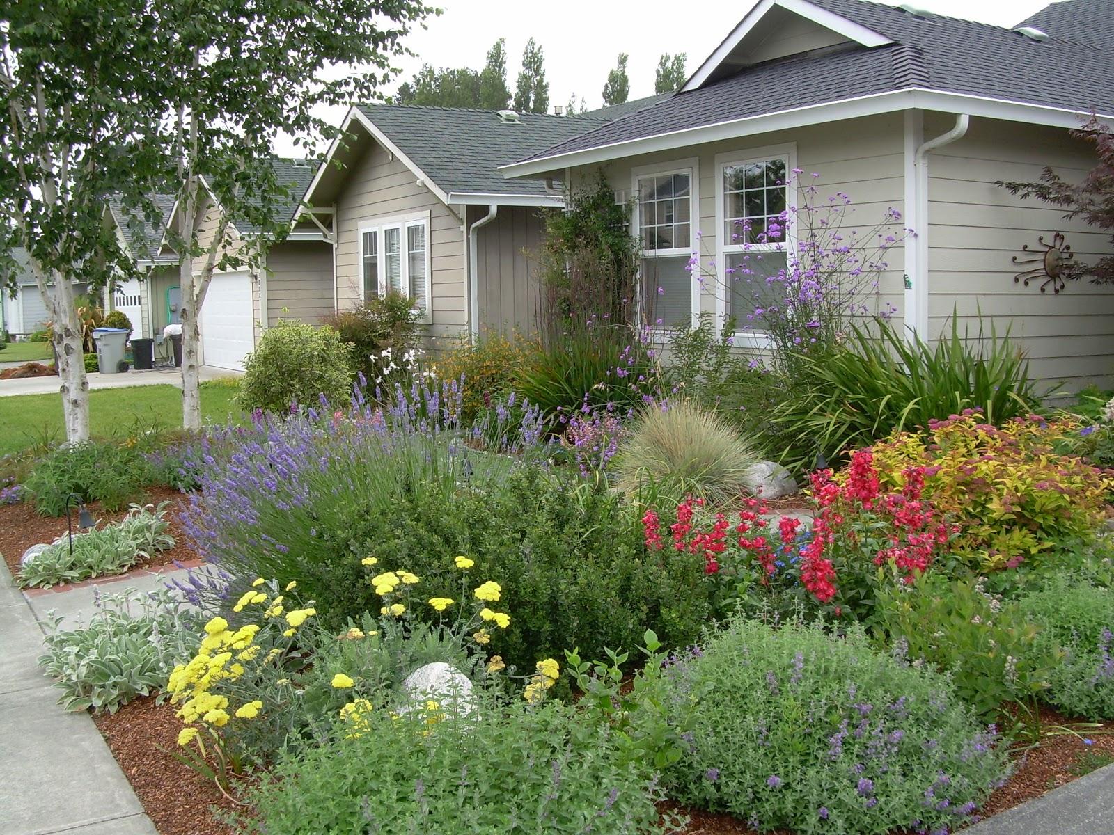 Garden visions donna wildearth landscape designer for Parterre exterieur jardin