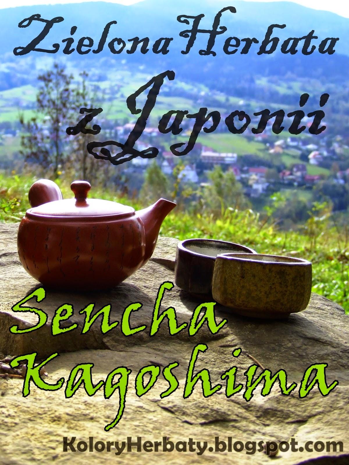 Sencha Kagoshima - zielona herbata z Japonii