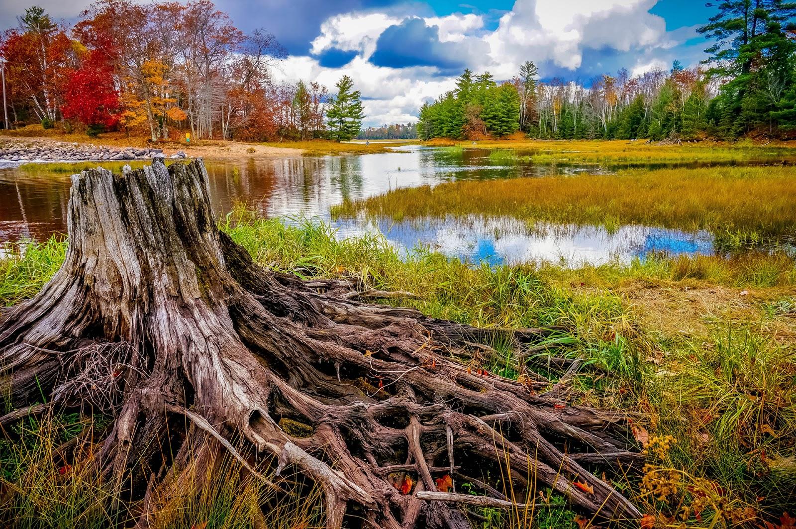 Image Gallery las fotos de paisajes
