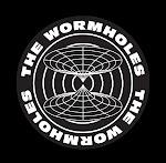 THEWORMHOLES.ORG