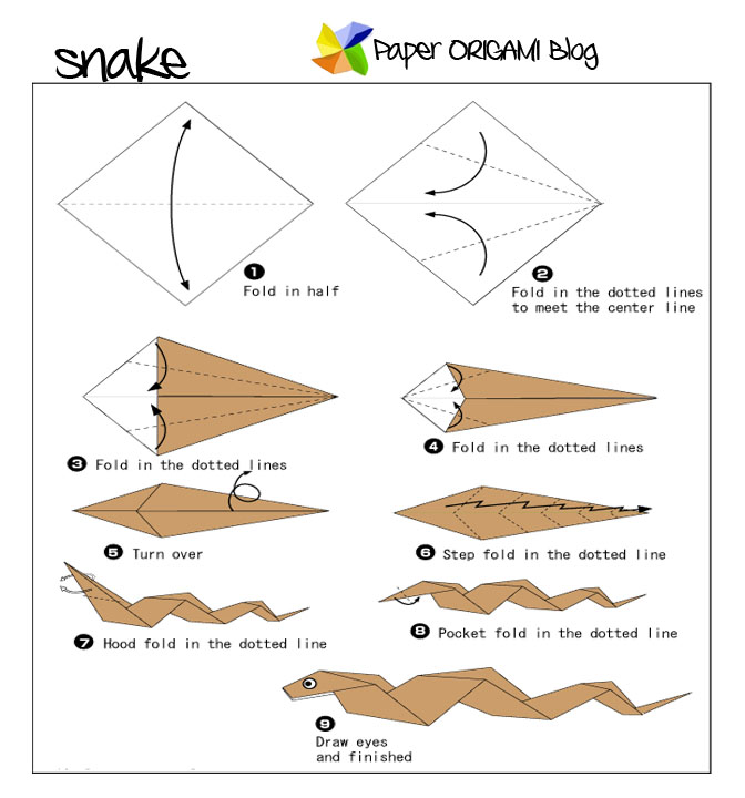 Folding Diagram of Snake Origami
