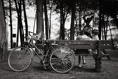 Bicicletta nella pineta di Cervia
