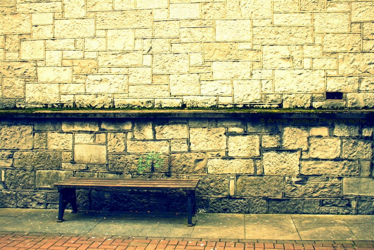 Galway city bench, street