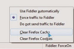 how to clear my browser cache in firefox