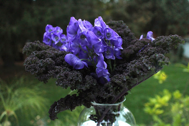 The Impatient Gardener -- The Garden Appreciation Society -- Monkshood and kale