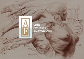 BLOG DE ESTUDIOS ANATÓMICOS