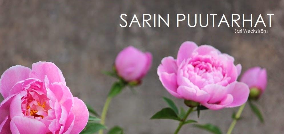 Sarin puutarhat -blogini Asuntomessujen sivuilla