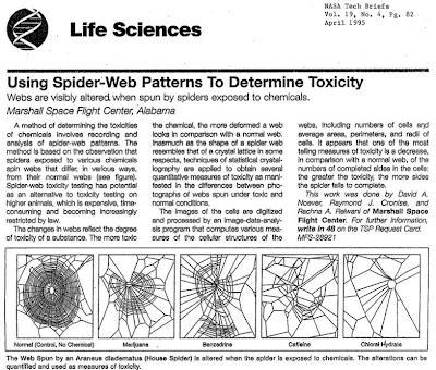 Telarañas de una araña drogada