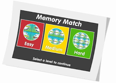 http://www.fisher-price.com/us/fun/games/zooTalkers-memory/memory_match.swf