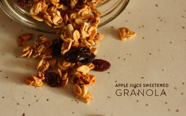 ... date sweetened vegan gluten oat nut chewy granola bars date sweetened