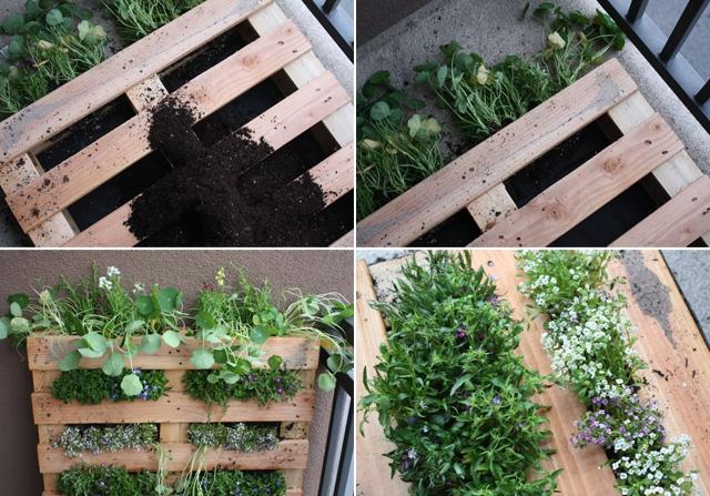 jardim vertical sacada:Sacada de apartamento ganha jardim vertical em palete de madeira