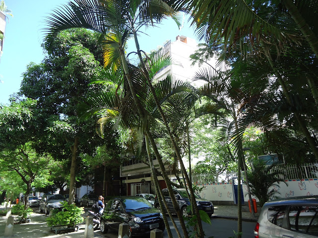 Rio de Janeiro, Ipanema, ruas, arborizadas