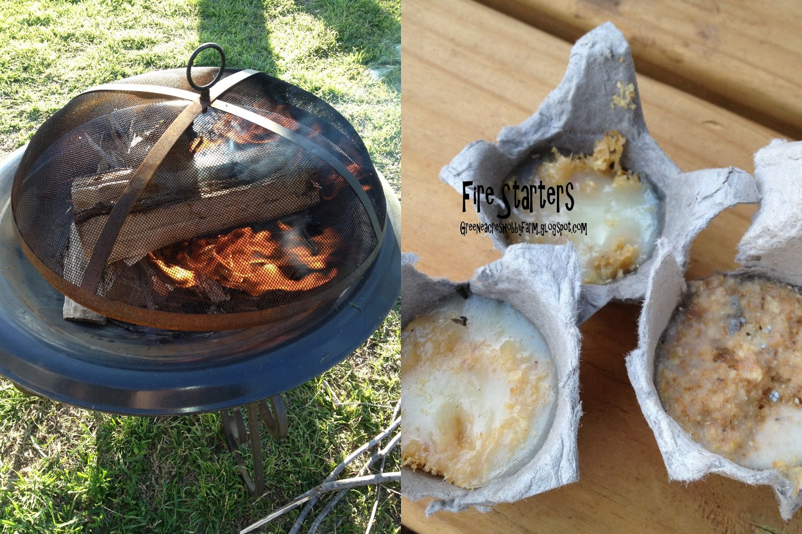 Sawdust Fire Starters ~ Greene acres hobby farm diy egg carton fire starters for
