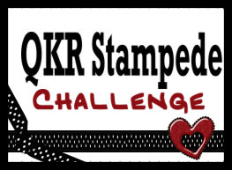 QKR Stampede Challenge