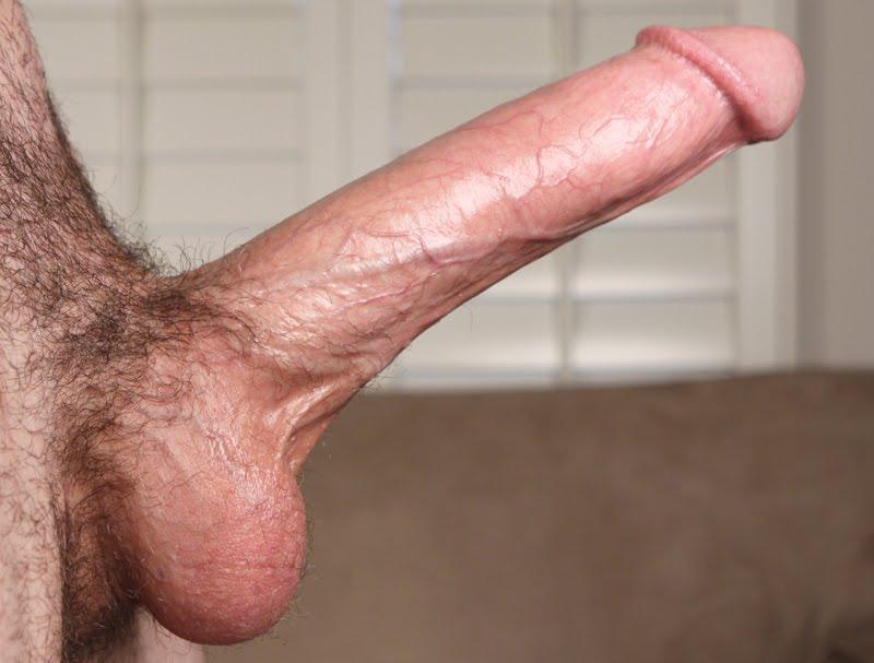 Romanatwoods Penis
