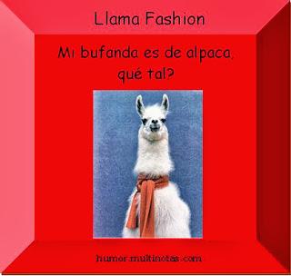 Imagenes Graciosas de Animales, Llamas