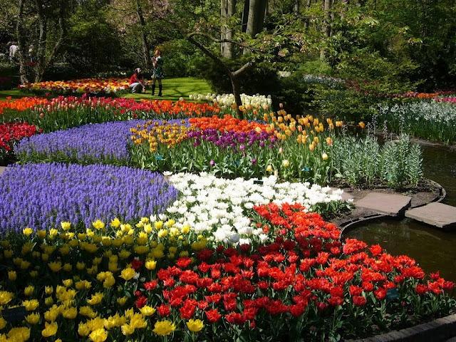 Keukenhof Gardens - Holanda - O mais belo parque primaveril do mundo